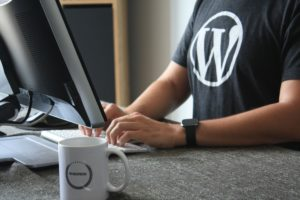 13 interessante statistieken over WordPress